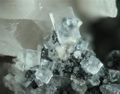 Fluorit, Bb. 6 mm, Sammlung und Foto: Thomas Noll