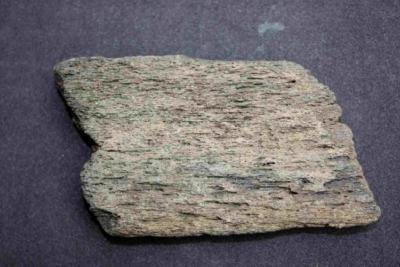 Versteinerter Knochen, Breite 80 mm