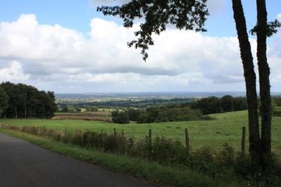 Blick vom Zugang zur Fundstelle aus. September 2008