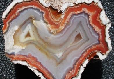 Neue Galerie mit Achaten und Fossilien aus Kiesgruben in den Niederlanden