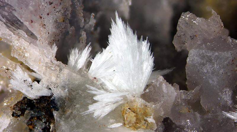 Seltene Minerale in der Grube Clara!