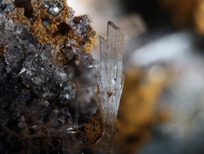 Mineralien der Grube Clara aus den Sammlungen unserer Mitglieder