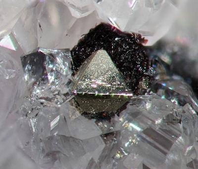 Pyrit auf Hämatit, Bb. 3 mm, Sammlung und Foto: Thomas Noll