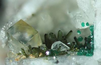 Olivenit,Fluorit, Baryt,Cornwallit, Bb. 3mm, Sammlung und Foto: Thomas Noll