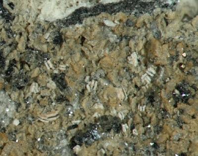 Carbonat-Hydroxylapatit, Neheim -Hüsten, Sauerland, Bb.2,5 mm, Sammlung und Foto: Thomas Noll