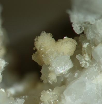 Rittmannit, Silbergrube Waidhaus, BB=2,5mm, Foto:Noll, Sammlung:Mebus