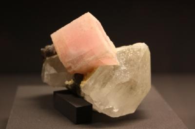 Rhodochrosit, Quarz, Scheelit, Yaogangxian Mine, Yizhang, Hunan, China